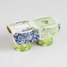 yogur de arandanos